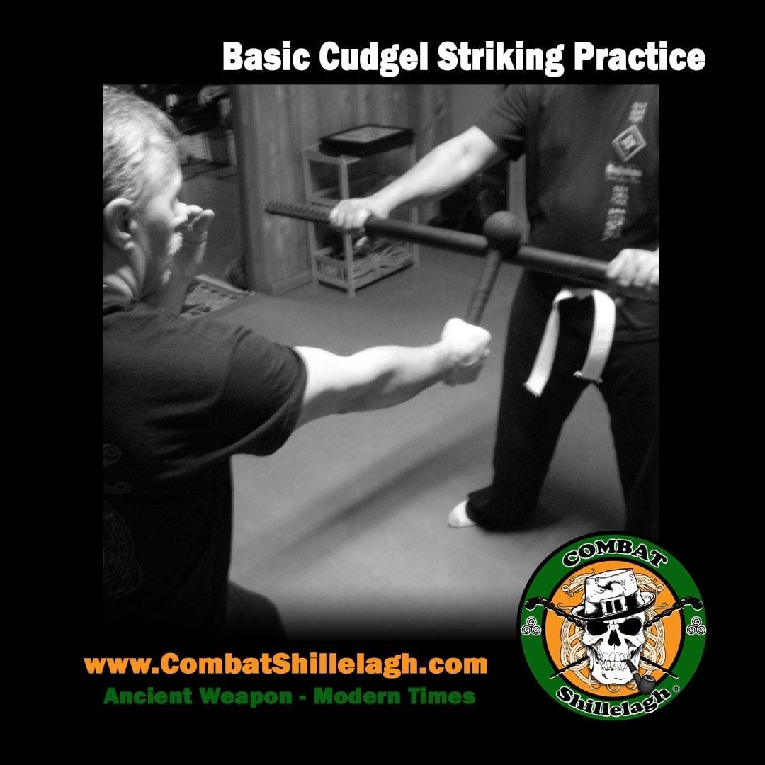 CS-Instagram-Cudgel-Practice